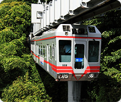 Route 4 Take a ride on the local trains! Golden Triangle Route!