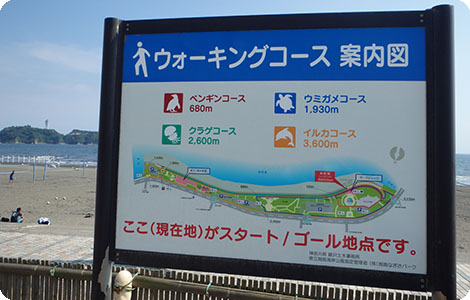 Shonan Beach Park Walking Tour